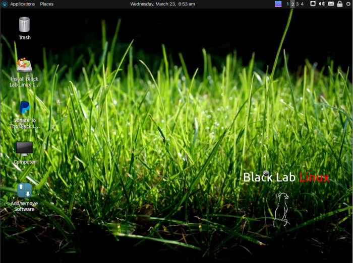 black lab linux 8.0
