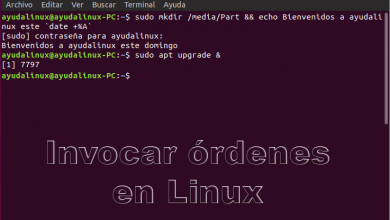 Photo of Cómo invocar órdenes en Linux a través de la Shell