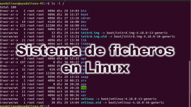 Photo of Sistema de ficheros en Linux: Todo sobre su estructura