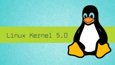 Photo of Lanzamiento oficial del Linux 5.0, esto es lo nuevo