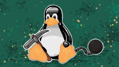 Este virus de Linux elimina otras infecciones para instalar las suyas