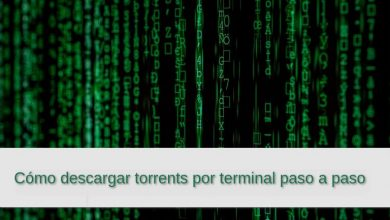 Photo of Cómo descargar torrents por terminal