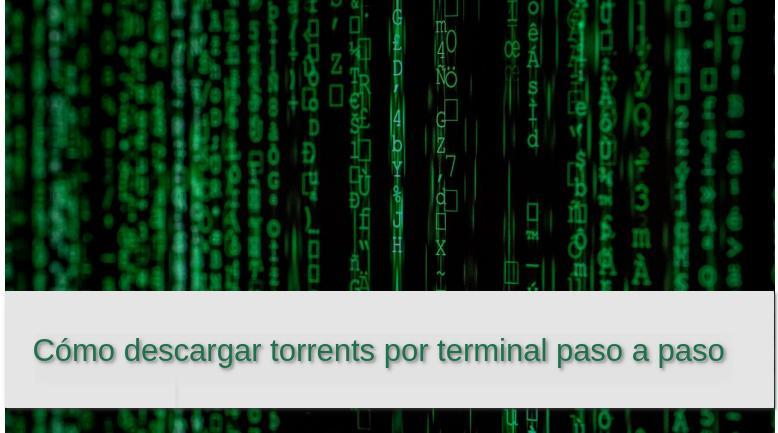 Cómo descargar torrents por terminal paso a paso