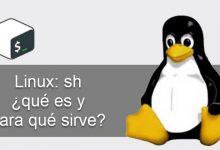 Photo of Linux sh ¿Qué es y para que sirve?