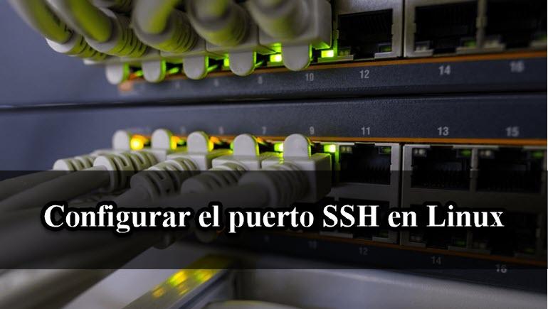 Configurar el puerto SSH en Linux 【Paso a Paso】