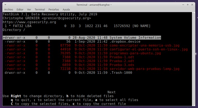 testdisk: archivos eliminados